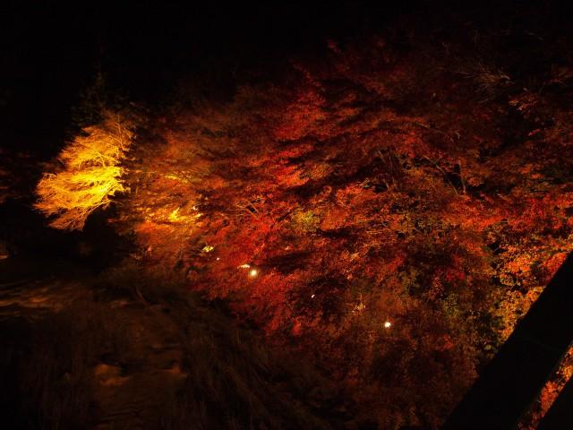 奥津渓紅葉