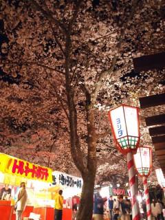 打吹公園の桜と屋台